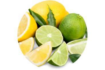 367x245px_lemon_aroma